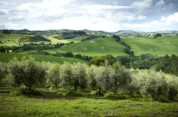 Chianti, Val d'Orcia & Co. – The Tuscan Hills